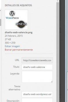 etiqueta alt SEO on-pagecowalenciawebs