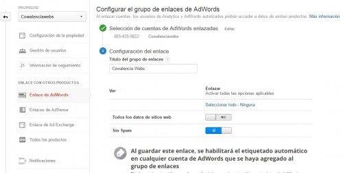 Enlazar las vistas de Analytics con Adwords